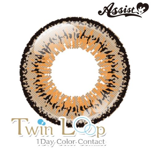 Twin Loop